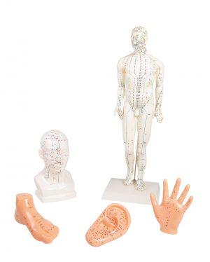 Chinesisches Akupunkturset, 5 Modelle