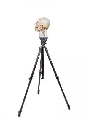 Stativ für Röntgenschädel, schwere Ausführung