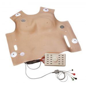 Brustkorbhaut zum Defibrillieren für R10052
